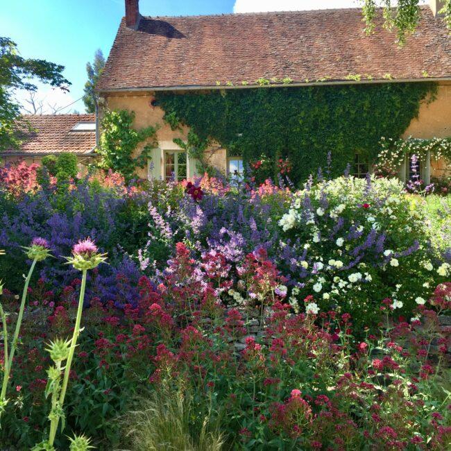 Le jardin de Marie