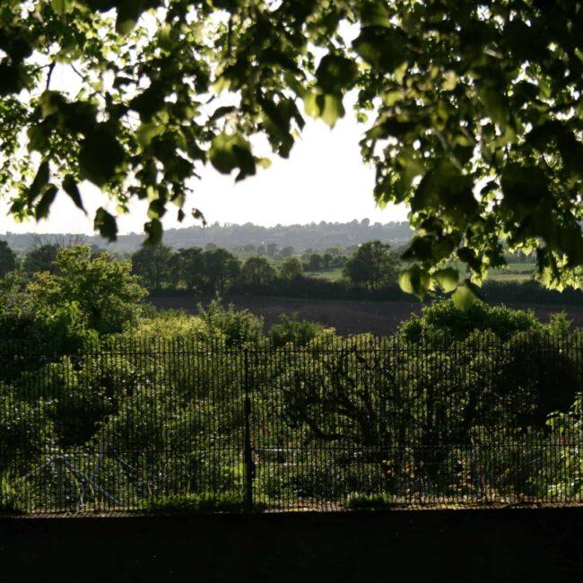 vue sur le paysage